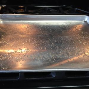 the baking sheet well sprayed