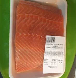 Two fresh pieces of salmon, ready for the recipe.